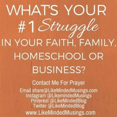 What's Your Number 1 Struggle In Faith, Family Homeschool or Business?