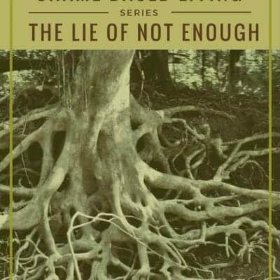 How to Destroy the Roots of Shame in Your Life: I am not enough