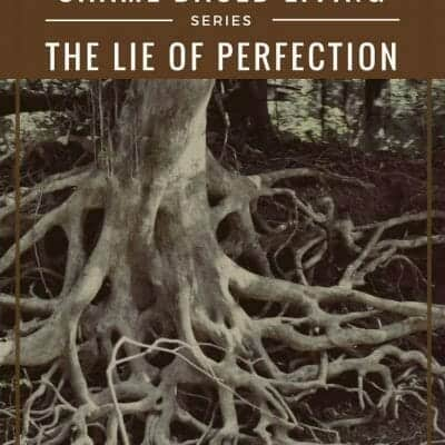 How to Destroy the Roots of Shame in Your Life: I am not perfect like her