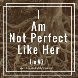 Destroy-the-Roots-of-Shame-Based-Living-The-Lie-of-Perfection