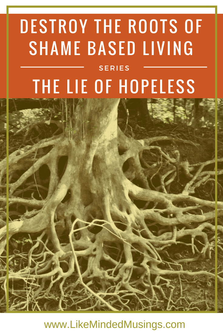 Destroy the Roots of Shame Based Living - The Lie of Hopeless.jpg