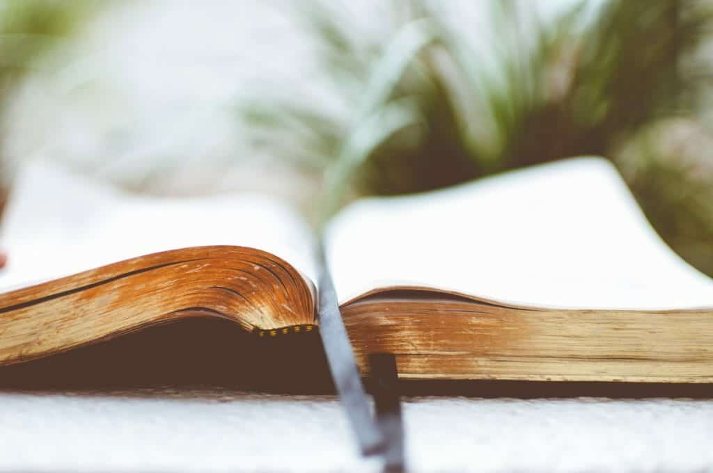 3 Ways To Equip Your Tween with a Biblical Worldview | Like Minded Musings