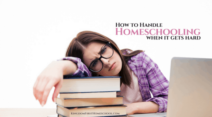 Guest Post: How to Homeschool When its Hard - Homeschooling 101 Blog Party! | Like Minded Musings