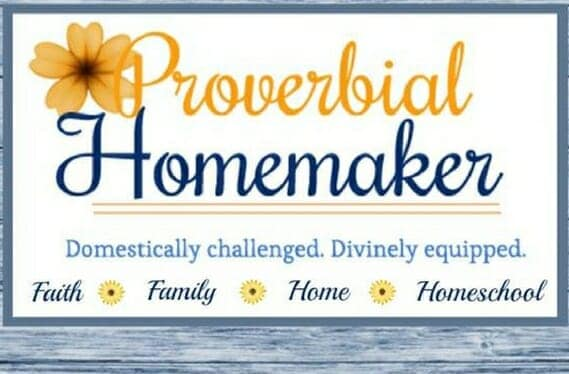 The Proverbial Homemaker Like Minded Musings