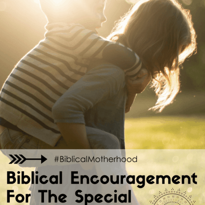 Biblical Encouragement For The Special Needs Mom {Guest Post}