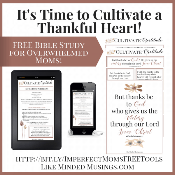 Facebook Cultivate a Thankful Heart Bible Study for Overwhelmed Moms Like Minded Musings