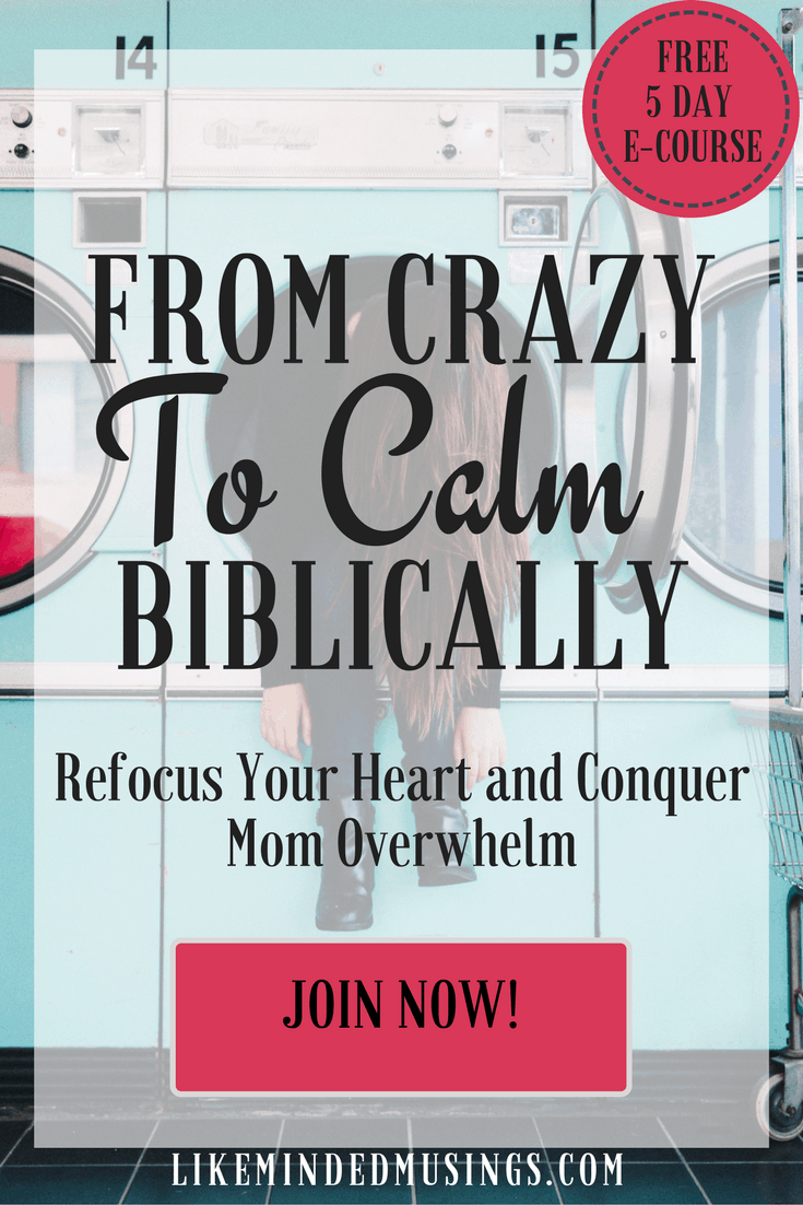 From Crazy to Calm Biblically Like Minded Musings 2