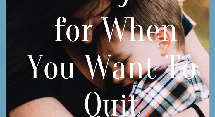 Homeschool Encouragement for When You Want To Quit: Homeschool Encouragement and Inspiration Series