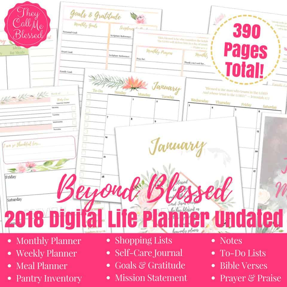 Beyond Blessed Planner