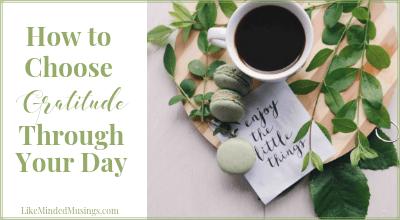 How to Choose Gratitude Through Your Day Gratitude Challenge Like Minded Musings