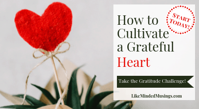 Featured How to Cultivate a Grateful Heart Gratitude Challenge Like Minded Musings