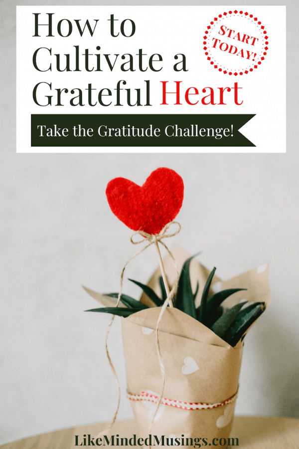 How to Cultivate a Grateful Heart Gratitude Challenge Like Minded Musings