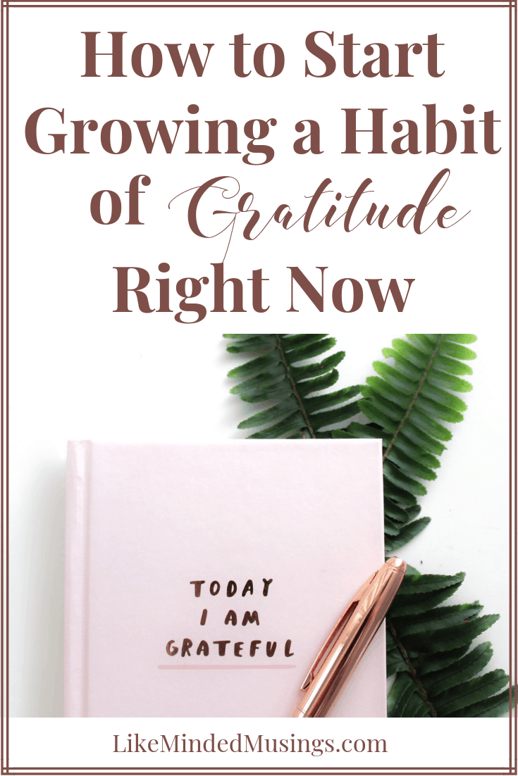 Learn How to Start Growing in Gratitude Right Now on Like Minded Musings