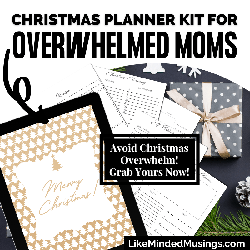 Christmas Planner and Organizer Pictures